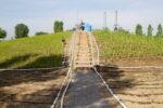 L'agricoltura del futuro a Lodi