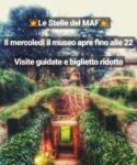 Le Stelle del MAF - Museo Archeologico di Firenze