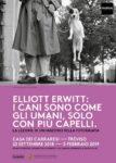 Eliott Erwitt: i cani sono come gli umani, solo con più capelli